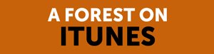 A Forest iTunes